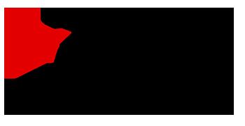 Kreisverband Leichtathletik Zwickau e.V. (KV-LA Zwickau e.V.)